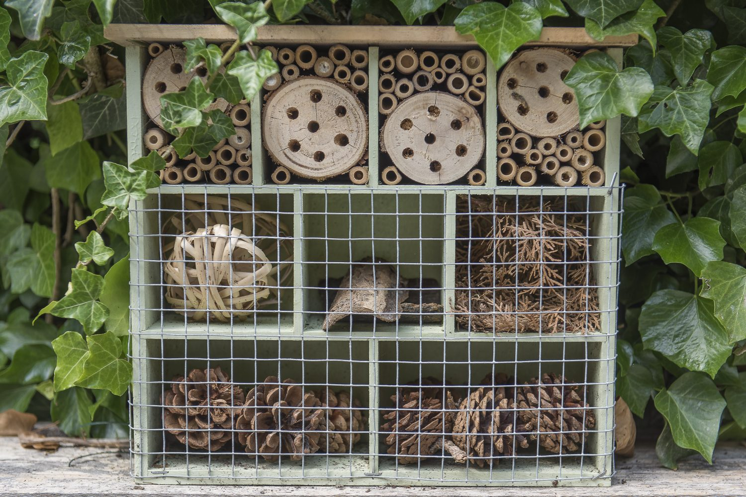 The bug house encourages insect life into the garden
