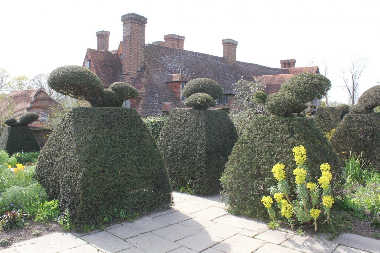Yew topiary focal points at Great Dixter