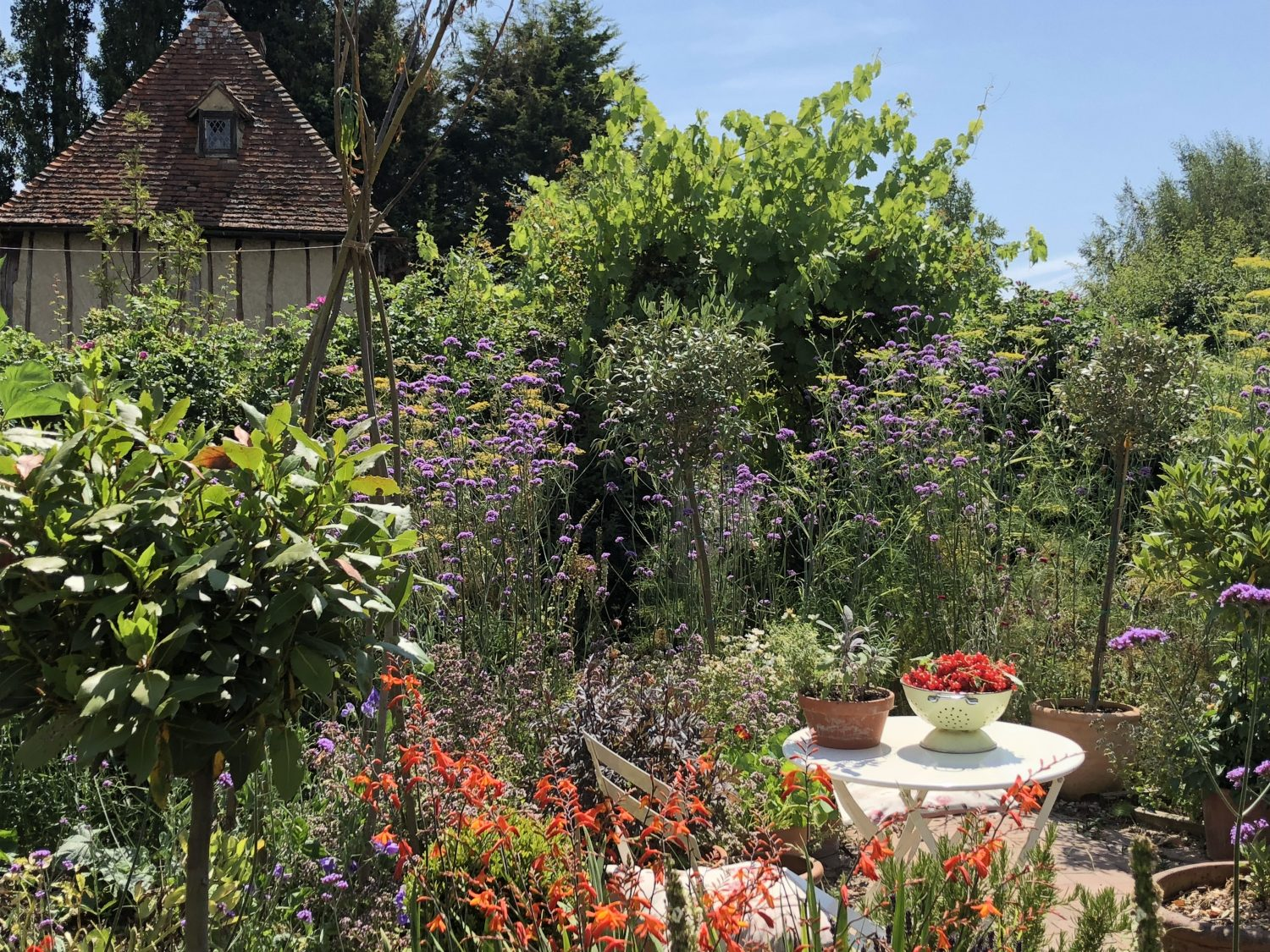 Jo Arnell's garden at Hornbrook Manor