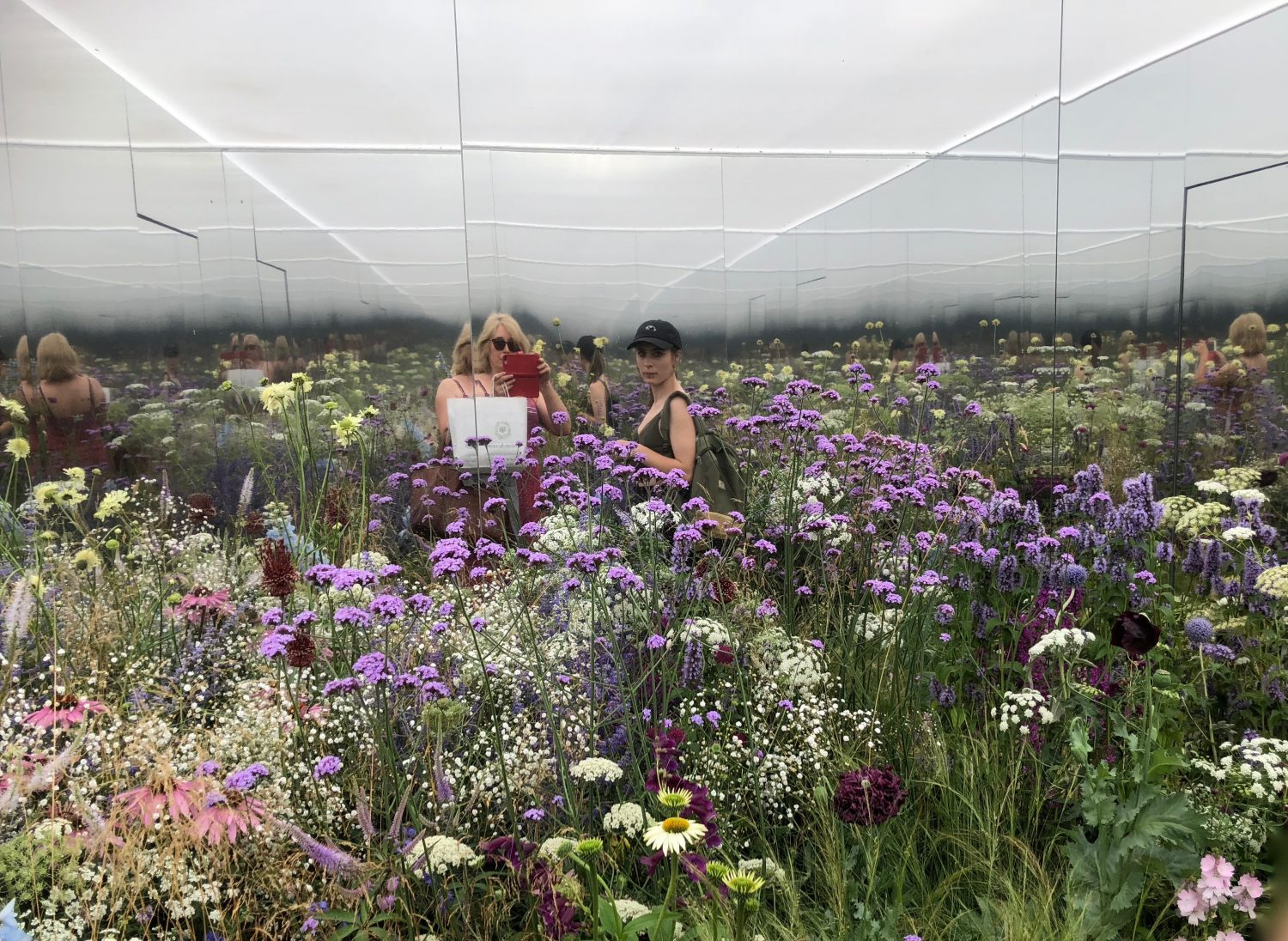 Hampton Court Flower show - meadow in a mirrored box by Alex Rainford-Roberts