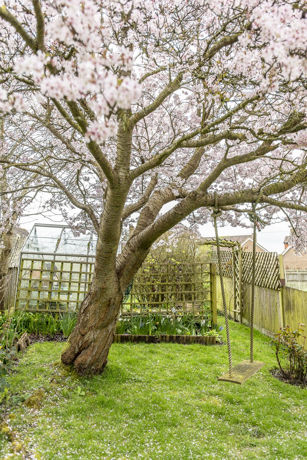 The pale pink conveniently continues outside with the beautiful blossom of a mature cherry tree